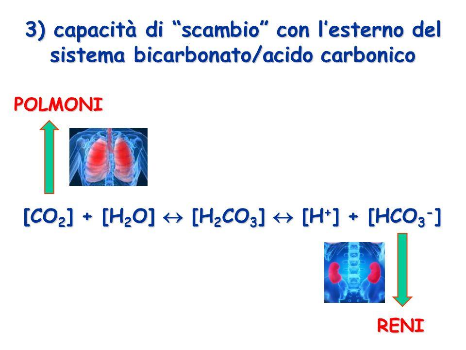 [CO2] + [H2O]  [H2CO3]  [H+] + [HCO3-]